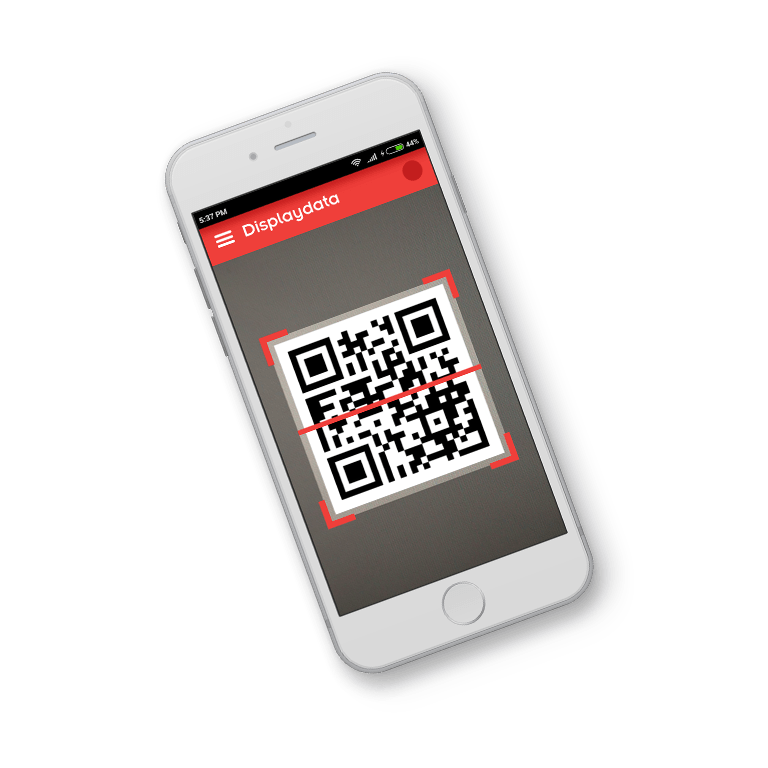 display data qr code